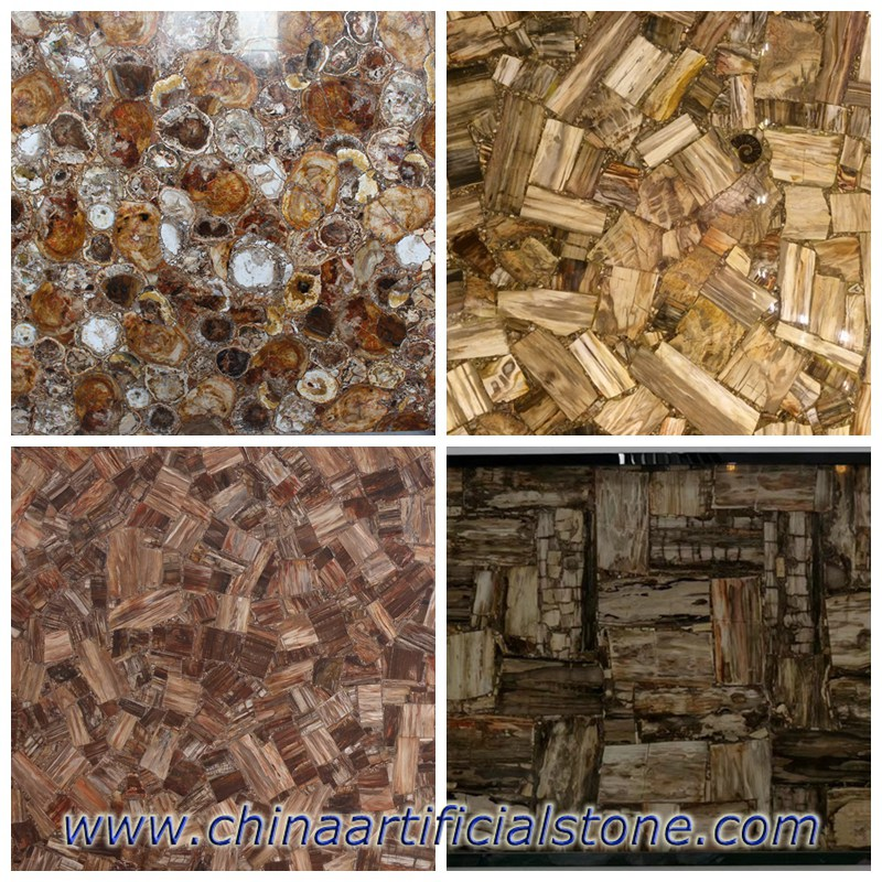 Petrified Wood gemstone slabs patterns